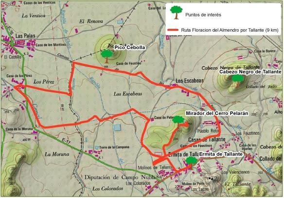 Ruta Floracion Almendro