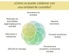Cómo colaborar