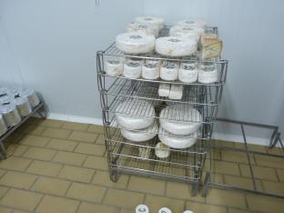 Visita a la quesería Caprilac (22)