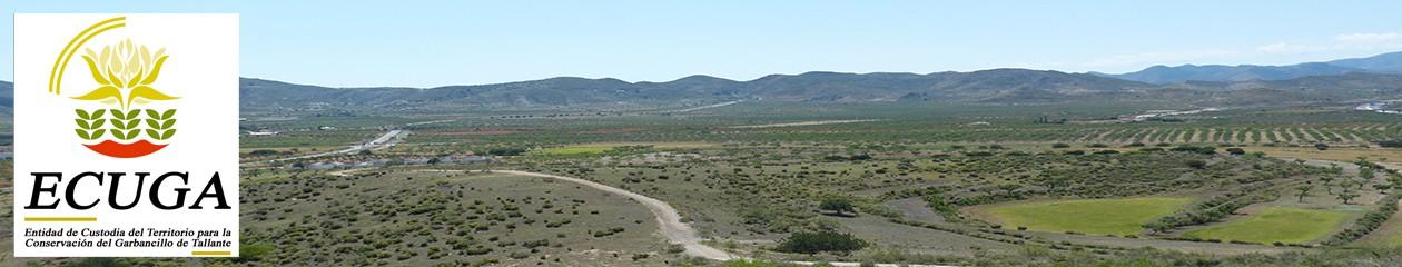 Plataforma para la difusión de las actuaciones de custodia del territorio relativas a la conservación del Garbancillo de Tallante