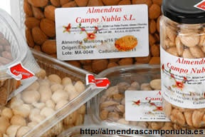 almendras_camponubla (1)