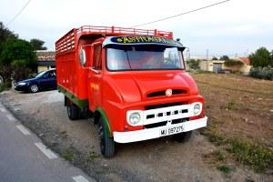 El camión oficial del garbancillo de Tallante (Astragalus nitidiflorus)