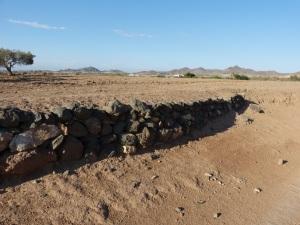 Parada 8_Muros de piedra construidos con material volcánico