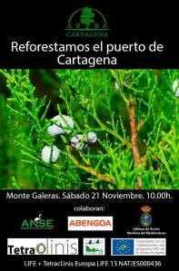 20151113_Plantacion_ARBACartagena