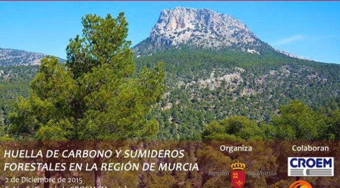 Jornada sobre Huella de Carbono y Sumideros Forestales