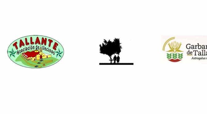 Actividades de la AAVV Tallante para Enero 2016