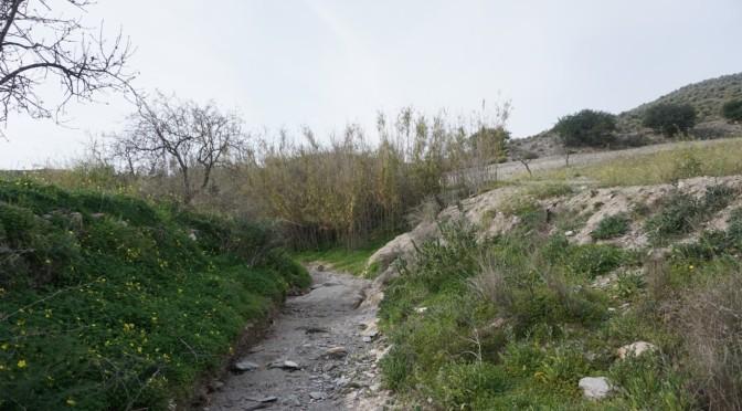 Excursión bordeando el Alto de las Cutandas