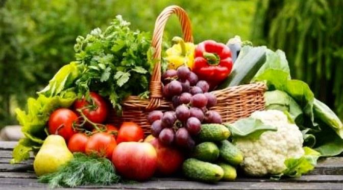 Jornada sobre agricultura y consumo ecológico en Isla Plana