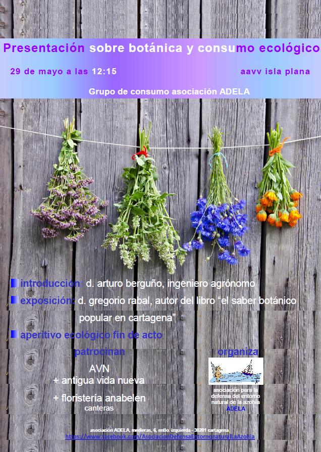 Actividades de la Asociación ADELA en Mayo-Junio 2016