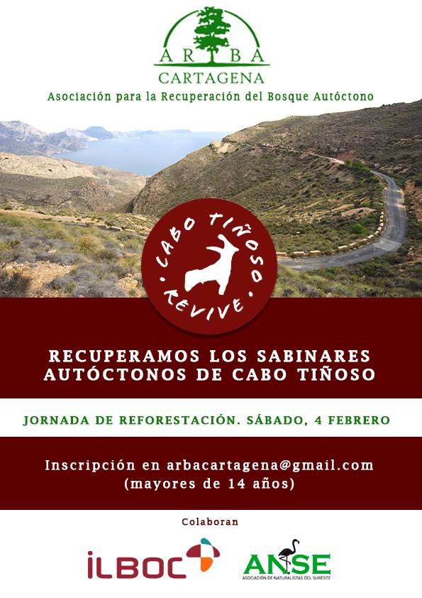 ARBA Cartagena trabaja para recuperar los sabinares de Juniperus phoenica